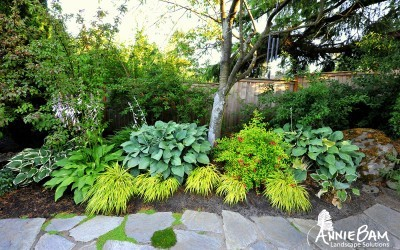 annie-bam-landscape-design-planting-schemes-2