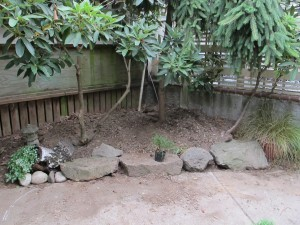 """Before"" picture of soon-to-be Fairy Garden area"